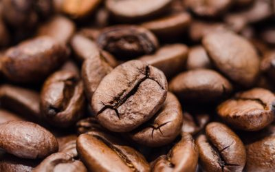 Mannheimer Abendakademie bietet Kaffeeseminar
