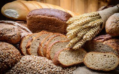 Brotbackbuch: Für Einsteiger zwischen Krume und Kruste