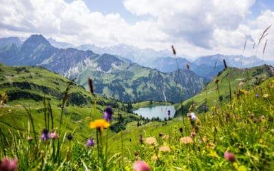 Allgäu-Kochbuch: Urlaub vom Kalorienzählen